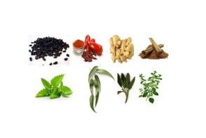 herb-pics1
