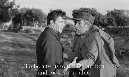 Zorba the greek (2)